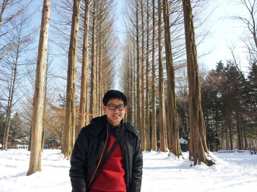 The Beauty of Nami Island
