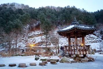 garden_of_morning_calm_(5)