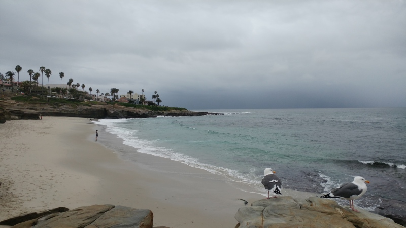 A cloudy day, but the view of La Jolla beach is still worth seeing.